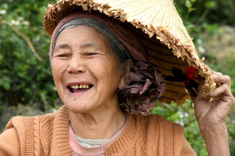 vorstellung über vietnamesische küche